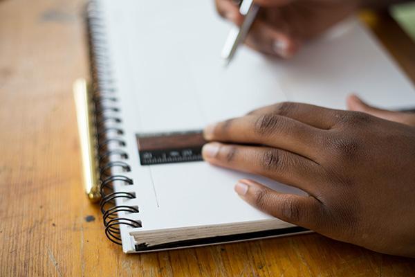 skriv ut röstlängd